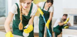 Чем отличаются профессиональные клининговые услуги по уборке помещений в СПб?